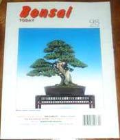 Bonsai Today Magazines £4 each